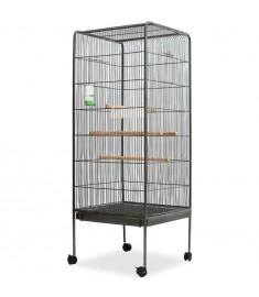 Κλουβί Πουλιών Μαύρο 54 x 54 x 146 εκ. Ατσάλινο   170408
